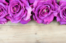 Border With Artificial Pink Roses Isolated On Wooden Background.