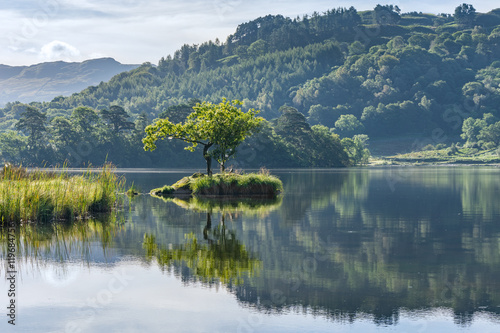 Fotobehang Bergen A lone tree on an island reflected in the lake at Rydal Water in the English Lake District.