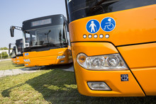 Public Transportation New Busses Physically Disabled