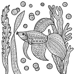 Fish coloring page.