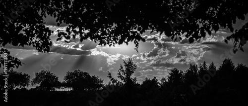 Photo  Contre jour en noir et blanc