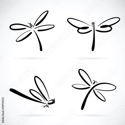 Photo  Vector group of dragonfly sketch on white background