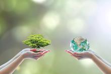 Eco-friendly Earth, Environmen...