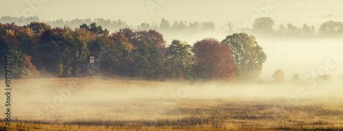Piękny,mglisty wschód słońca nad wiejską łąką