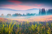 Colorful Summer Scene In The Foggy Mountain Village.