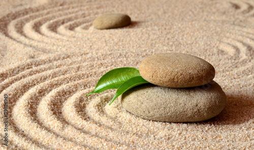 kamienie-i-zielony-lisc-na-piasku-z-kolkami