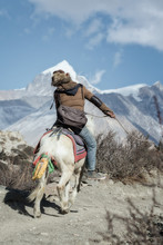 Man Riding On A Horse In Nepal...