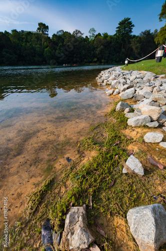 Photo  Part of reservoir in MacRitchie park
