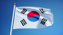 South Korea Flag Waving Agains...
