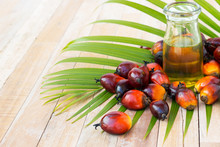 Commercial Palm Oil Cultivation. Since Palm Oil Contains More Sa