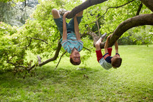 Two Happy Boys Hanging On Tree In Summer Park