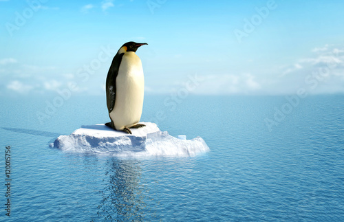 single penguin on a piece of ice Fototapet