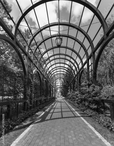 Tablou Canvas Black and white image of archway overgrown with plants at park
