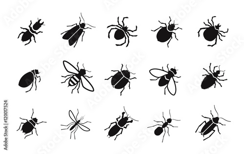 Carta da parati Pests and various insects set vector icons