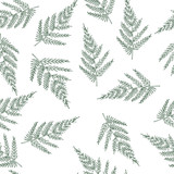 Seamless pattern with ferns. Unusual natural texture. Vector wallpaper with plants created for your design. - 120025903