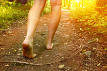 Feet Walking Along The Forest ...
