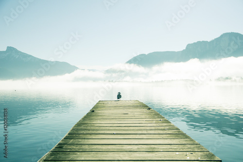 pier-with-seagull-by-mondsee-in-austria