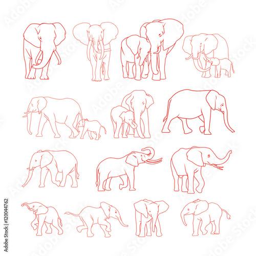 Elephant outline Wallpaper Mural