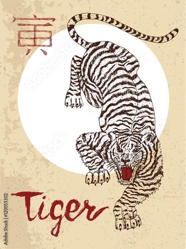 zodiak-chinski-symbol-tygrysa-z-pregami