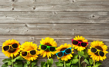 Sunflowers With Sunglasses
