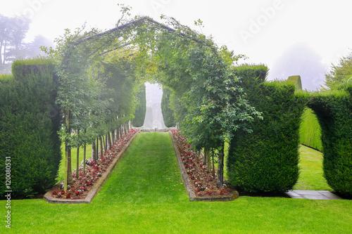 Spoed Fotobehang Begraafplaats DUNEDIN, NEW ZEALAND - FEBR 10, 2015: foggy morning in the Garden of Larnach Castle.