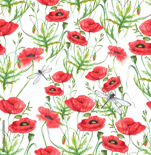 Hand-drawn watercolor floral seamless pattern. Summer meadow flowers - poppy on the white background. Repeated pattern for textile, wallpaper. Red colorful blossom - 120086956