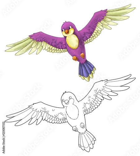 Cartoon Exotic Colorful Bird Flying Isolated With Coloring Page Illustration For Children Buy This Stock Illustration And Explore Similar Illustrations At Adobe Stock Adobe Stock