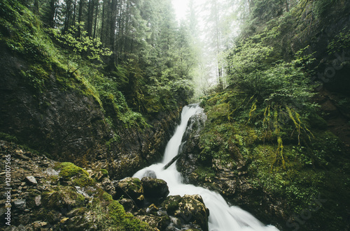 waterfall on forest stream natural landscape