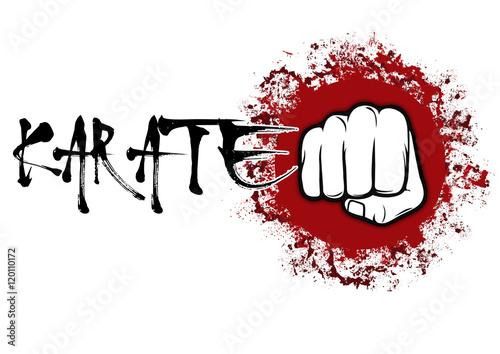 Photo  Karate Soco Sol Vermelho Soco