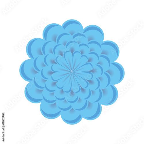 Fototapety, obrazy: blue floral blossom. nature beauty flower. vector illustration