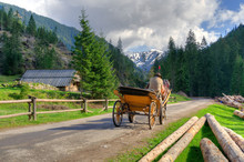 Horse Carriage Ride In Beautiful Mountain Valley In Western Tatra, Poland.