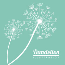 White Dandelion Icon. Summer S...