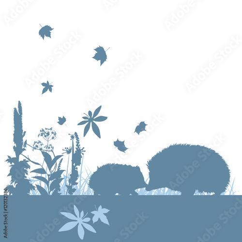 Photo sur Toile Oiseaux sur arbre Silhouetten Igel Herbst Wiese