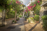 Beautiful alley full of trees and flowers on Capri Island, Italy
