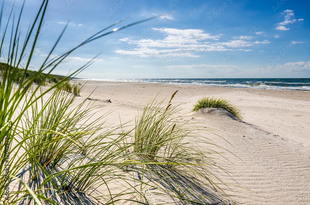 Fototapeta Mrzeżyno, plaża