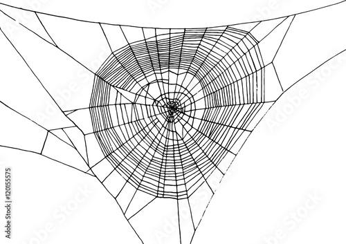 Fotografie, Obraz hand drawn spiderweb