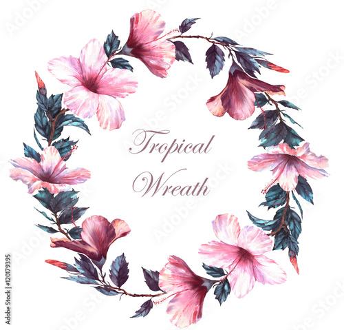 recznie-rysowane-akwarela-ilustracja-kwiatowy-przetargu-wieniec-z-bialy-i-rozowy