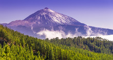 Teide Park And Teide Volcano In Winter Season, Tenerife, Canary Islands, Spain