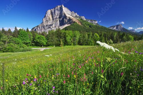 montagne du granier - vallée des entremonts en chartreuse Fototapet