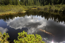 Three Lake Moor (Trijezerni Sl...