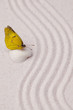 A yellow vivid butterfly on a white sea shell on zen garden