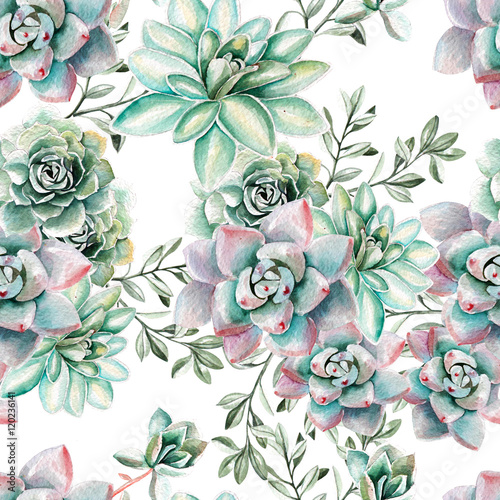 Cotton fabric Water color pattern with succulents . Illustration