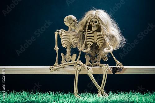 Fotografering  still life photography : skeletons couple amorously at night