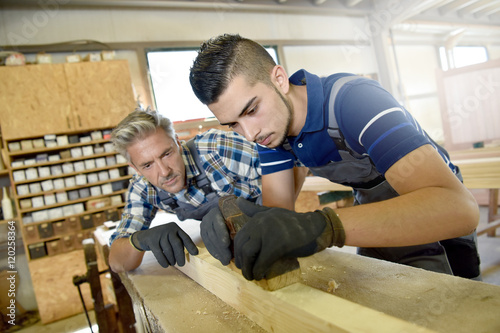 Carpenter with apprentice in training period Wallpaper Mural