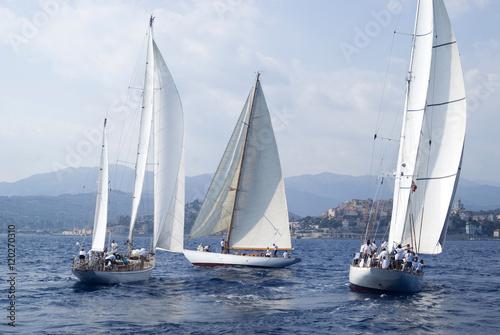 Poster Zeilen Classic yacht regatta
