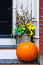 Pumpkin And Potted Plants Outs...