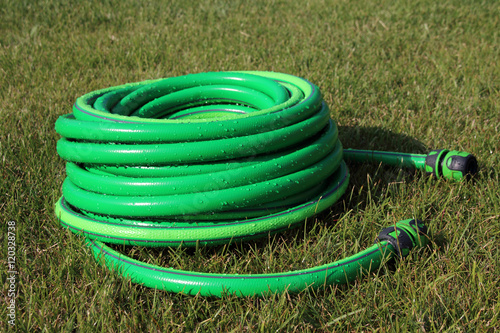 Fotografie, Obraz  Garden hose bundle on the mown lawn in the summer garden
