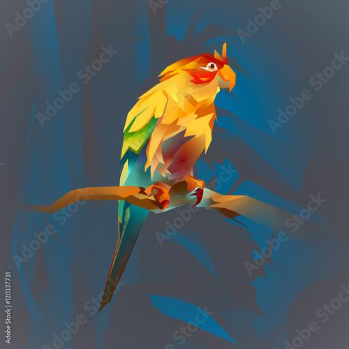 Papiers peints Chambre bébé bright parrot on a branch