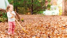 Happy Toddler Girl Raking Leaves
