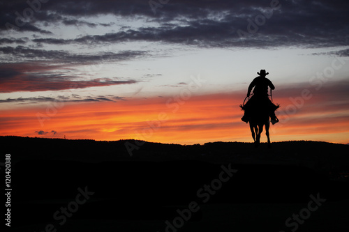 Fotografie, Obraz  Cowboy on a horse